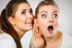 Deux femmes disant le bavardage Photos libres de droits