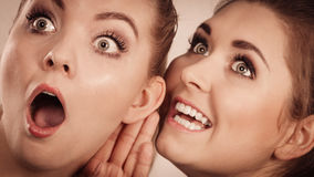 Deux femmes disant le bavardage Image libre de droits