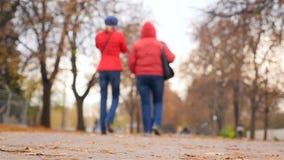 Deux femmes en rouge marchent en parc Temps d'automne Mouvement lent banque de vidéos