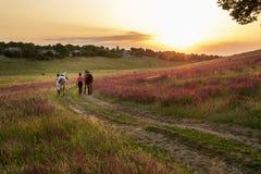 Deux femmes et deux chevaux extérieurs en nature heureuse de coucher du soleil d'été ensemble Photo stock