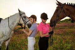 Deux femmes et deux chevaux extérieurs en nature heureuse de coucher du soleil d'été ensemble Images libres de droits