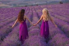 Deux femmes insouciantes tenir des mains appréciant le coucher du soleil dans le domaine de lavande harmonie Vue arrière de blond photographie stock