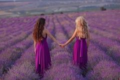Deux femmes insouciantes tenir des mains appréciant le coucher du soleil dans le domaine de lavande harmonie Vue arrière de blond photographie stock libre de droits
