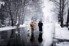 Deux femmes marchant un chien pendant l'hiver Image libre de droits