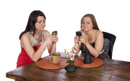 Deux femmes reposant des téléphones portables de café Photographie stock libre de droits