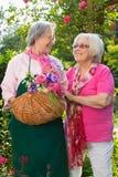 Deux femmes supérieures avec le panier se tenant dans le jardin Images libres de droits