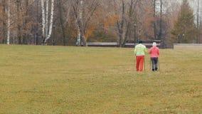 Deux femmes supérieures en parc d'automne ont le nordic marchant parmi le parc froid d'automne - vue arrière Photo libre de droits