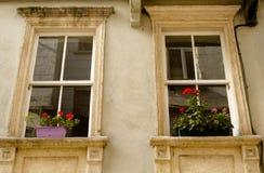 Deux fenêtres avec des fleurs dans des pots Photos libres de droits
