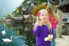 Deux filles alimentant des cygnes dans la ville de bord de lac de Hallstatt dans les Alpes autrichiens dans la belle lumière de s Photographie stock