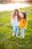 Deux filles assez jeunes sur l'herbe Photo stock