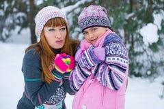 Deux filles ayant l'amusement en hiver Image stock