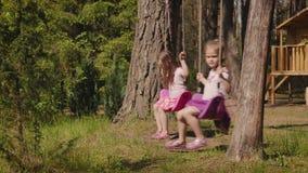 Deux filles balancent sur des oscillations dans la forêt banque de vidéos