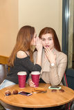 Deux filles bavardant dans une barre de café Photo stock