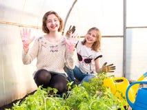 Deux filles blanches dans des jeunes plantes d'une greffe de serre chaude photographie stock