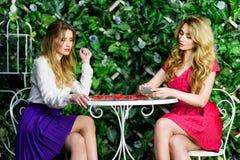Deux filles blondes causant et ayant l'amusement dans un café Image libre de droits