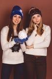 Deux filles d'amis dans des vêtements d'hiver Image stock