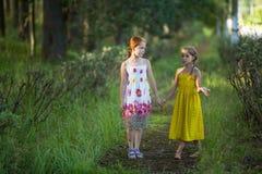 Deux filles d'enfants parlant en parc tenant des mains nature Image stock