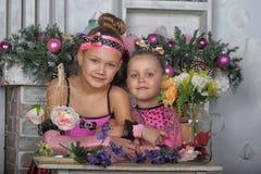 Deux filles dans le rose pour Noël Image stock