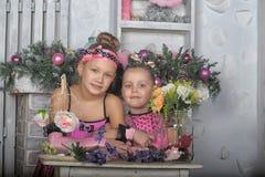 Deux filles dans le rose pour Noël Image libre de droits