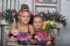 Deux filles dans le rose pour Noël Photos libres de droits