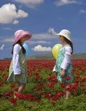Deux filles dans un domaine rouge Image stock