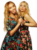 Deux filles de beauté avec un microphone Image stock