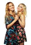 Deux filles de beauté avec un microphone Photos stock