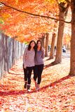 Deux filles de l'adolescence marchant ensemble sous l'arbre d'érable coloré d'automne Image stock