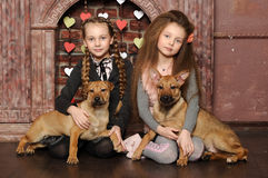 Deux filles de soeur avec des chiots Images libres de droits