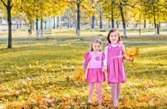 Deux filles en stationnement d'automne Image stock
