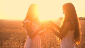 Deux filles font une guirlande des oreilles sur le champ de blé banque de vidéos