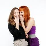 Deux filles gaies Images stock