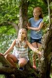 Deux filles heureuses grimpant à l'arbre en parc d'été Photo libre de droits