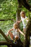 Deux filles heureuses grimpant à l'arbre en parc d'été Photos libres de droits