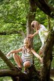 Deux filles heureuses grimpant à l'arbre en parc d'été Photos stock