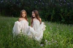 Deux filles marchant sur un pré vert parmi l'herbe grande Photographie stock