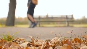 Deux filles marchent en parc Plan rapproché des jambes Mouvement lent banque de vidéos