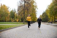 Deux filles pulsant en automne se garent le long du chemin et du sourire photo libre de droits