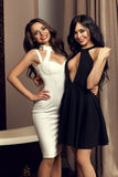 Deux filles sexy portant la robe photo stock