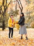 Deux filles sont en parc de ville d'automne Ils sélectionnent des feuilles photos stock