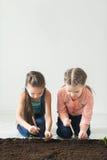 Deux filles sont jetées l'usine pour le jour de terre Photographie stock
