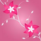 Deux fleurs sur le fond rose Photos stock