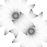 Deux fleurs sur un fond blanc Photographie stock