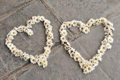 Deux formes de coeur faites de marguerites, sur le trottoir Image libre de droits