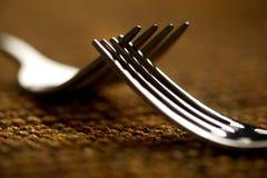 Deux fourchettes en rut Photographie stock libre de droits
