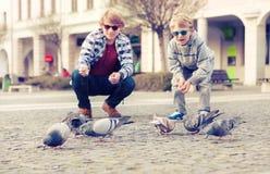 Deux frères alimentent des colombes sur la vieille place de ville Photographie stock
