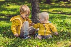 Deux frères heureux dans des pulls molletonnés jaunes pendant l'automne se garent photo libre de droits
