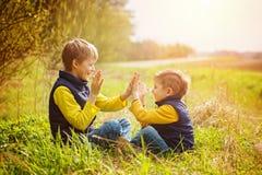 Deux frères heureux de litte ayant l'amusement ensemble au jour ensoleillé t Images libres de droits