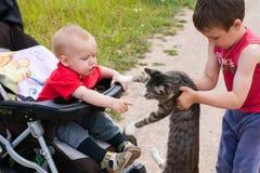 Deux frères ont rencontré un chat sauvage pendant une promenade dans le pays photo stock