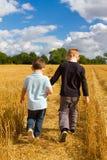 Deux frères retenant des mains dans les domaines de blé Photos libres de droits